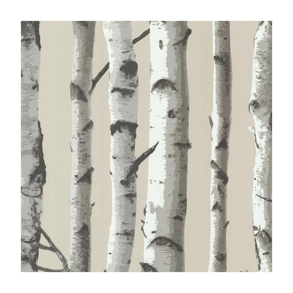 Provincial Wallcoverings 2532 20418 Irvin Grey Birch Tree Wallpaper 1000x1000