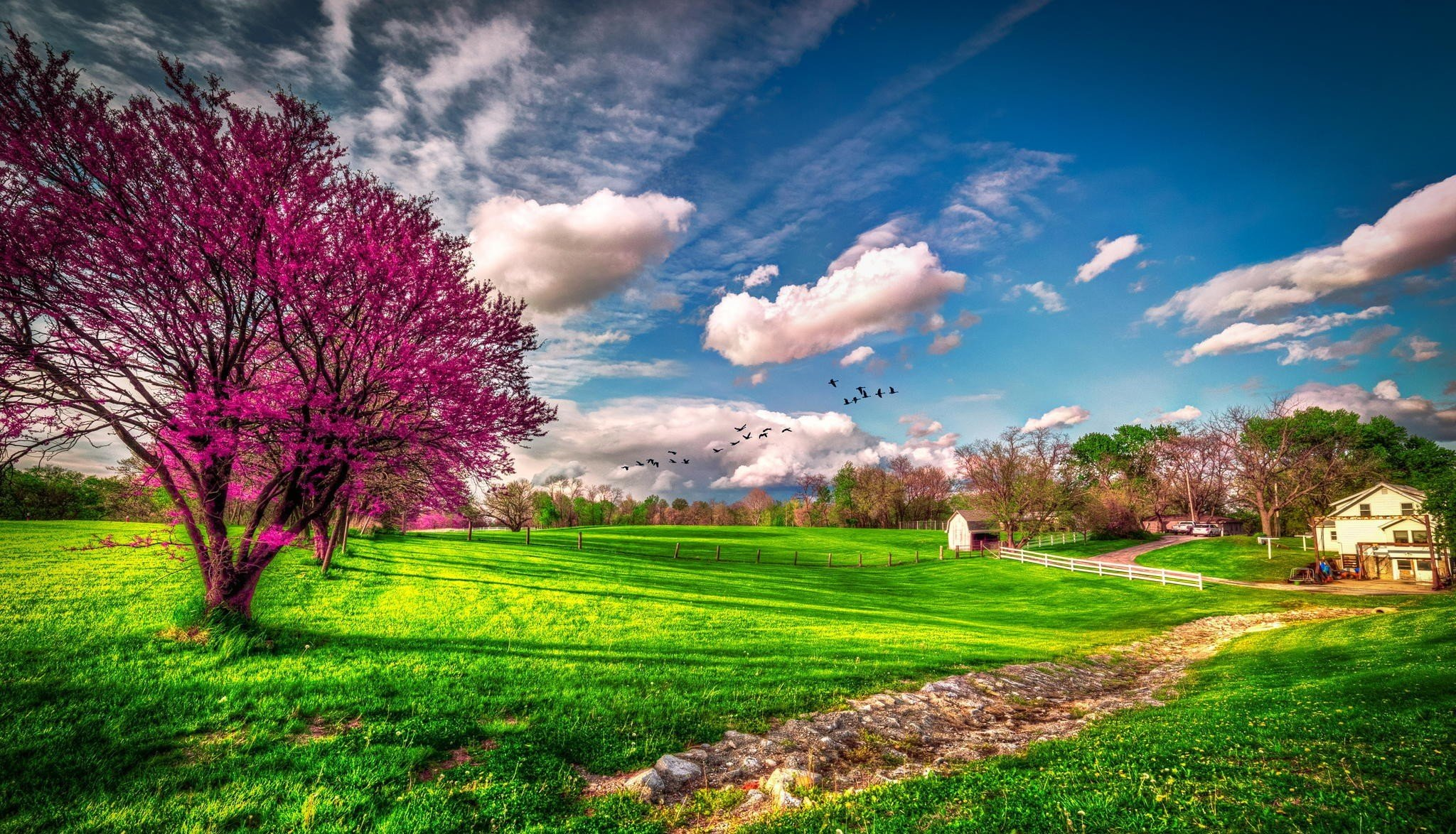 Spring Wallpapers HD download 2048x1174