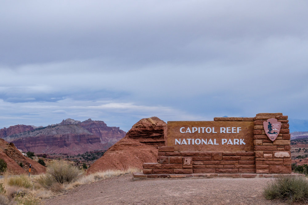 Capitol Reef National Park The Greatest American Road Trip 1000x667