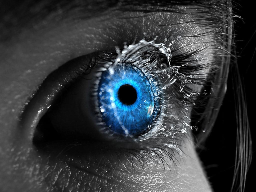 Blue eye   Eyes Wallpaper 8326072 1024x768