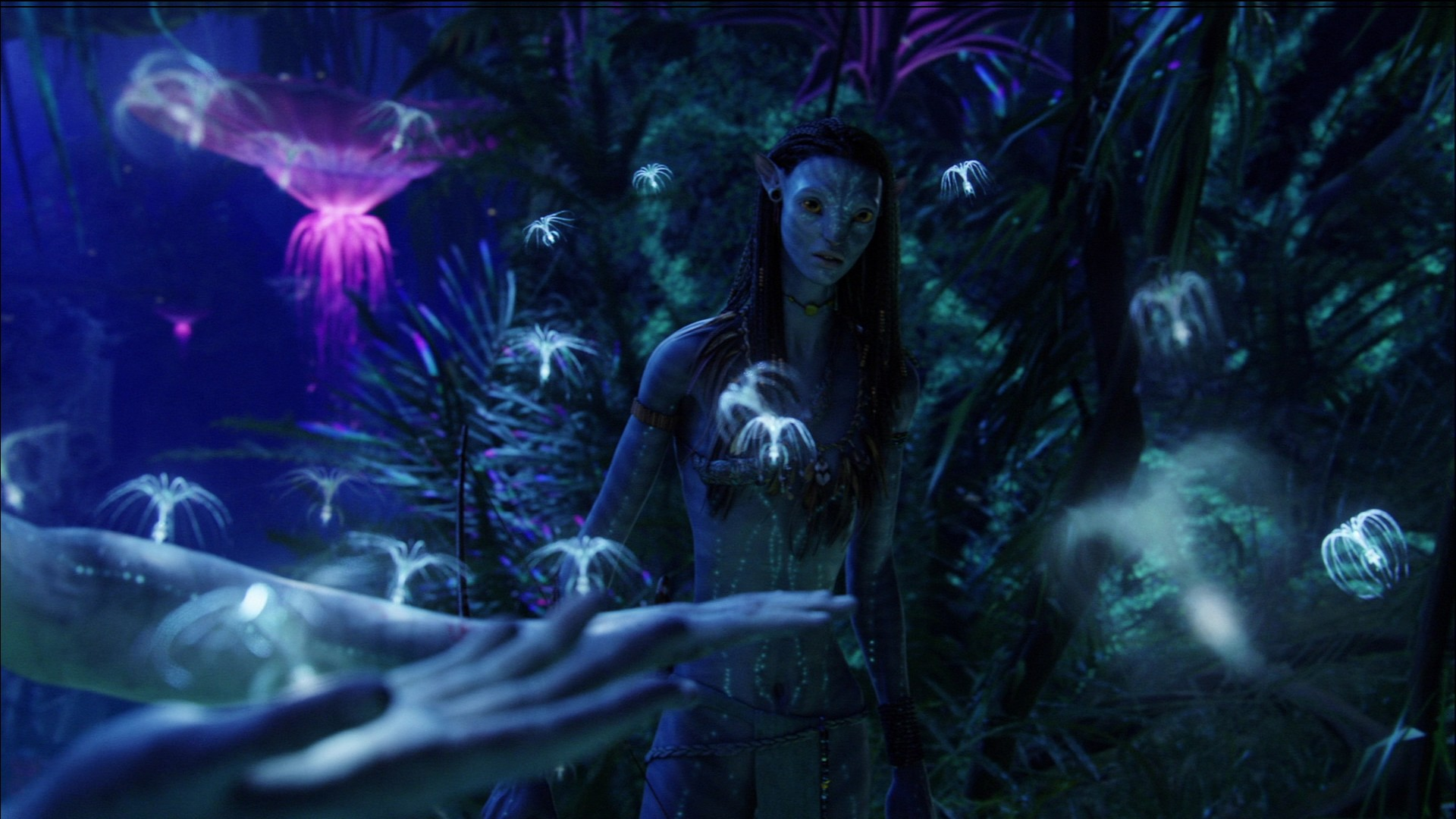 Free Hd Movie Download Point Avatar 2009 Free Hd Movie: Avatar HD Wallpapers 1080p