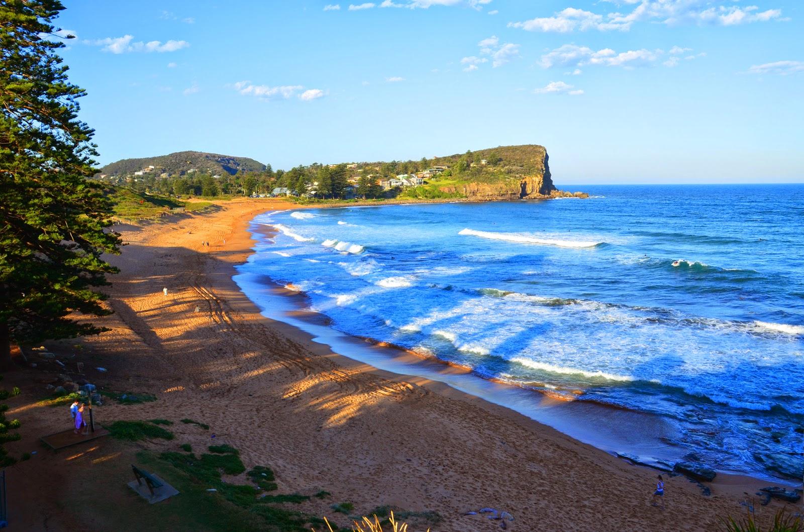 Beaches Wallpaper Beaches Wallpapers hd Avalon Beach Hd 1600x1059
