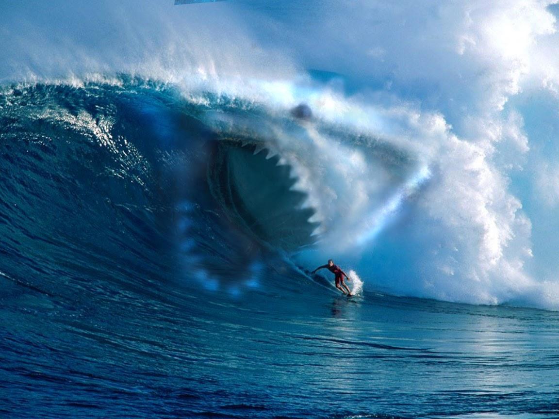Megalodon Shark Shadow HD Wall Wallpapers   HD Wall Wallpapers 1152x864