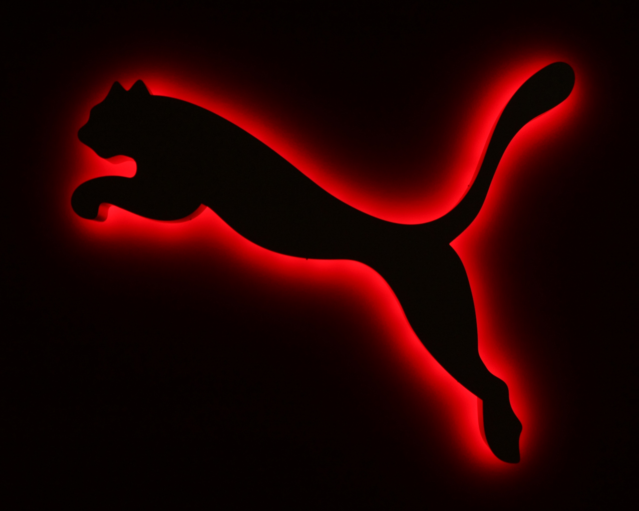 Beautiful HD Wallpapers Puma HD Wallpaper 1280x1024