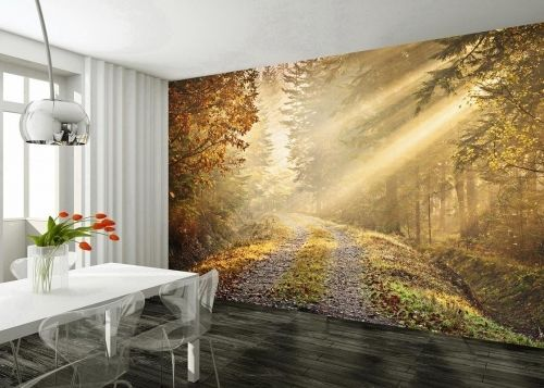 Forest Giant Easy Hang Wallpaper Mural Wall Paper Decoration eBay 500x357