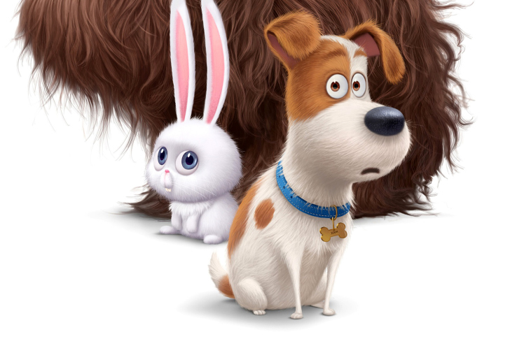The Secret Life Of Pets Wallpaper: Secret Life Of Pets Wallpaper