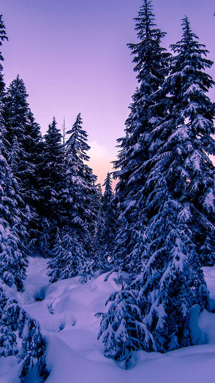 13 x Winter Landscapes iPhone Wallpaper Collection Preppy Wallpapers 736x1308