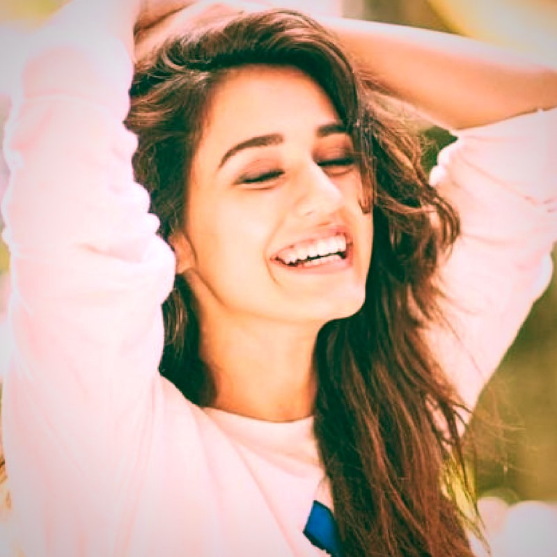 Disha Patani Wallpaper Hd Download Full Hd Photos Movies Stills 800x800