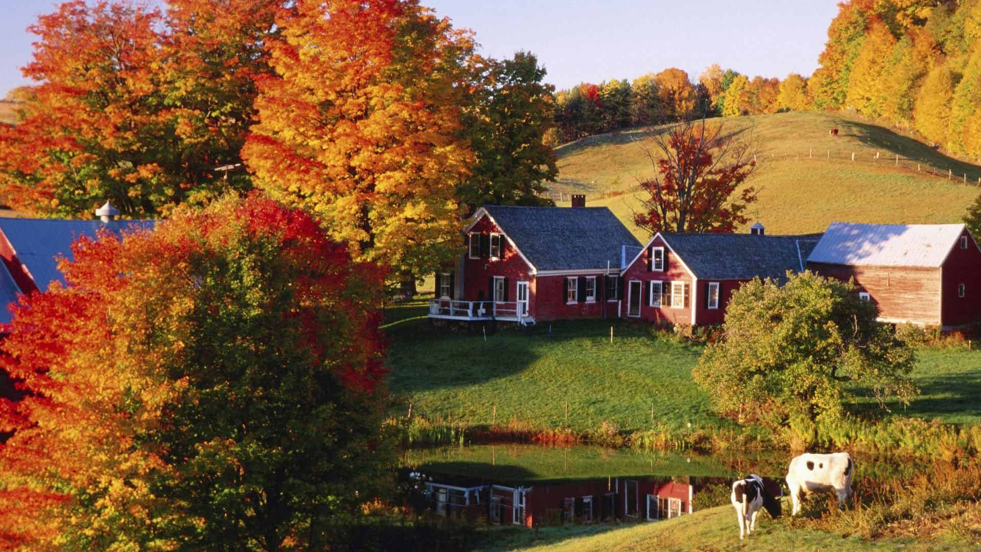 Vermont in Fall Desktop Wallpapers   Top Vermont in Fall 1920x1080