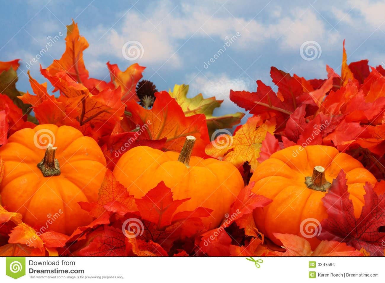 49 fall scene wallpaper with pumpkins on wallpapersafari - Pics of fall scenes ...