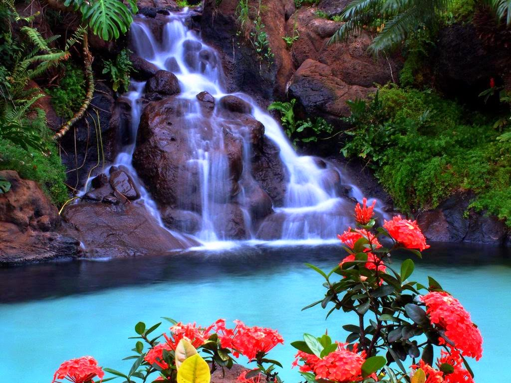 Animated Waterfall Wallpaper Wallpaper Animated 1024x768