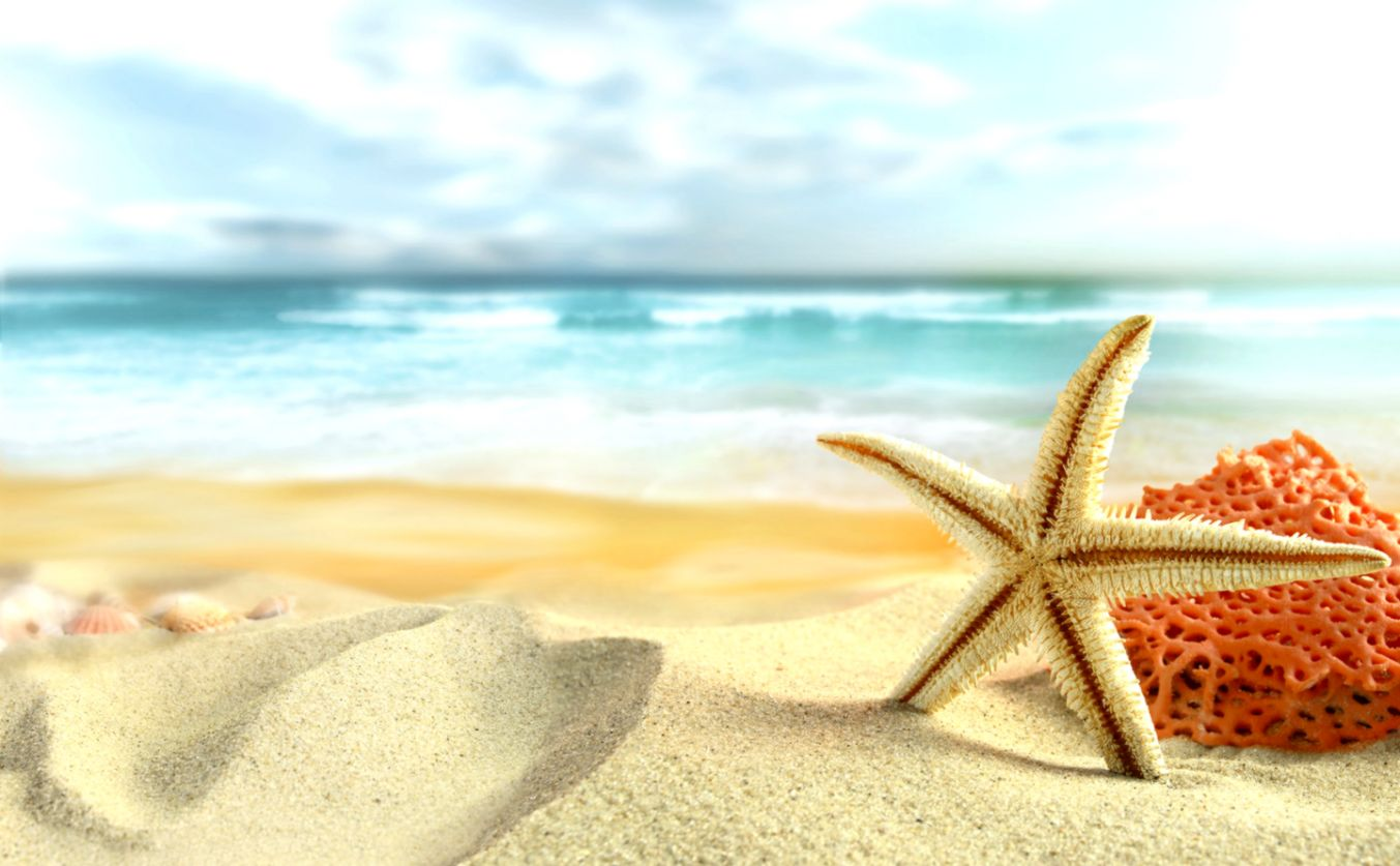 Summer Wallpaper For Desktop Joss Wallpapers 1353x837