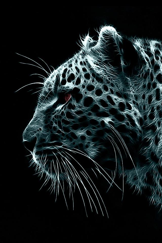 69 Black Cheetah Background On Wallpapersafari