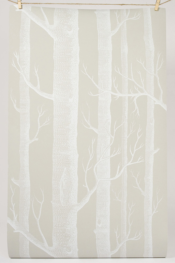 CNwoodcolor l 754758 Birch Trees Entryway 600x900