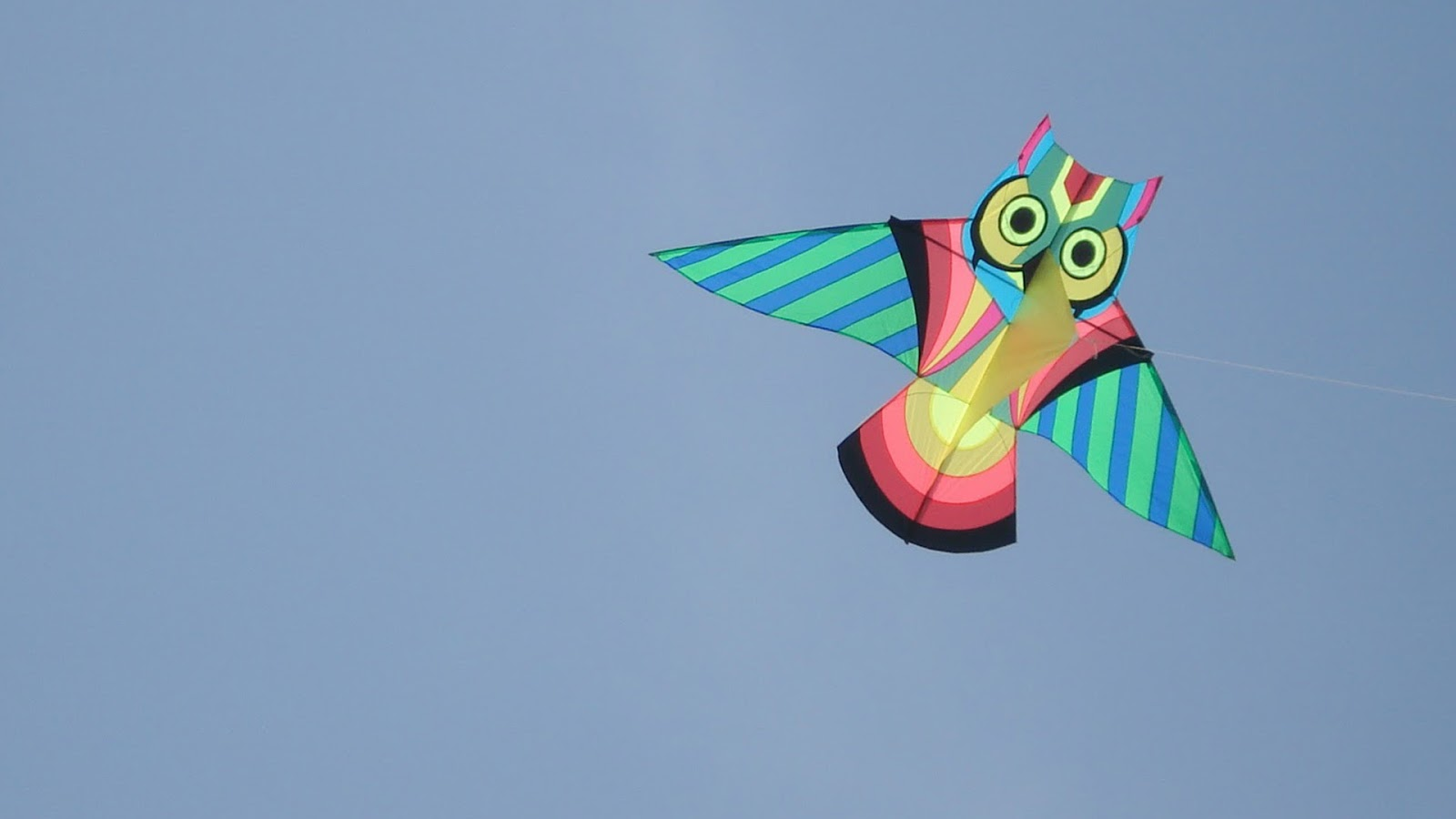 Kites 1600x900