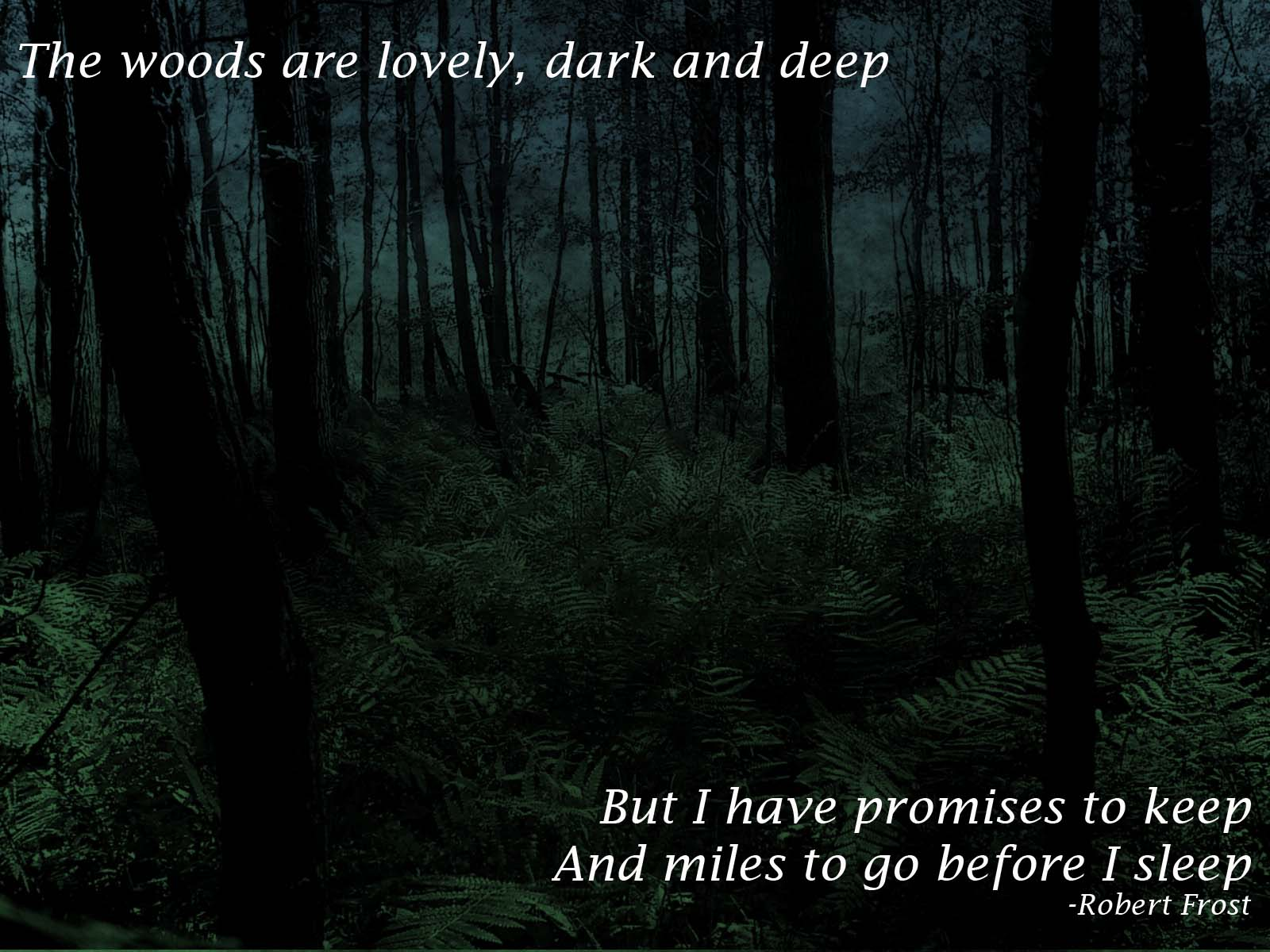 The woods are lovely dark and deep  Robert Frost   The best quotes 1600x1200