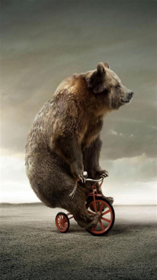 Circus Bear On Tricycle Animal iPhone Wallpapers iPhone 5s4s3G 640x1136
