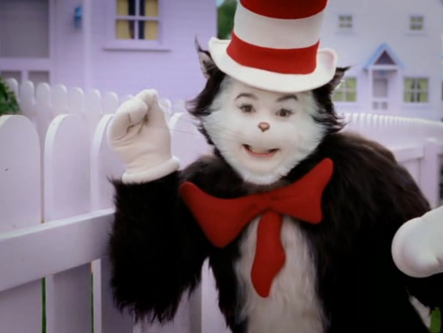 Cat in the Hat Movie images my gat HD wallpaper and 1432x1079