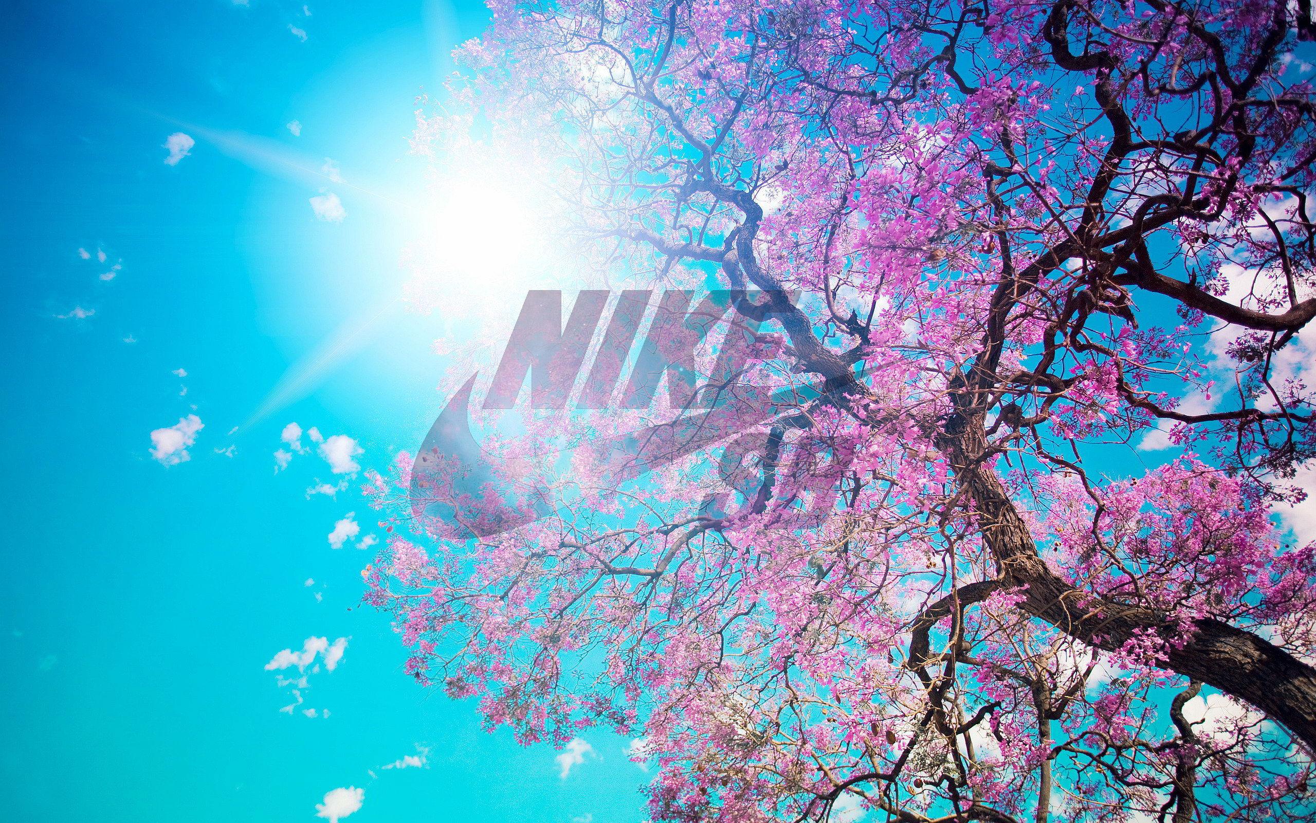 Nike free run tumblr