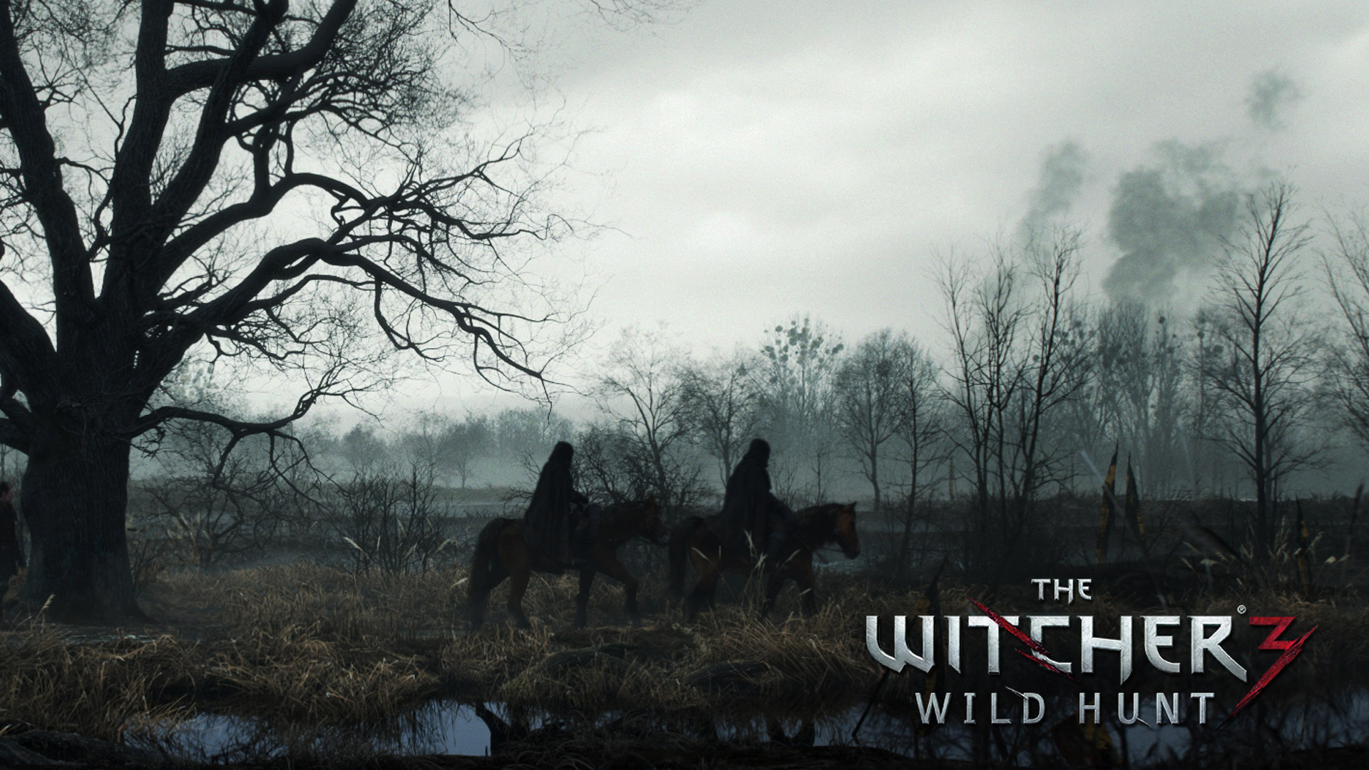 The Witcher 3 Wallpaper 1920x1080: The Witcher 3 1080p Wallpaper