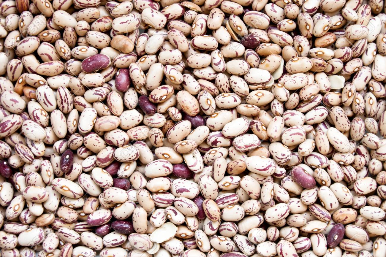 Dry Pinto Beans As Background Stock Photo Picture And Royalty 1300x866