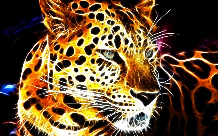 Fire Cat by billstelling 900x563