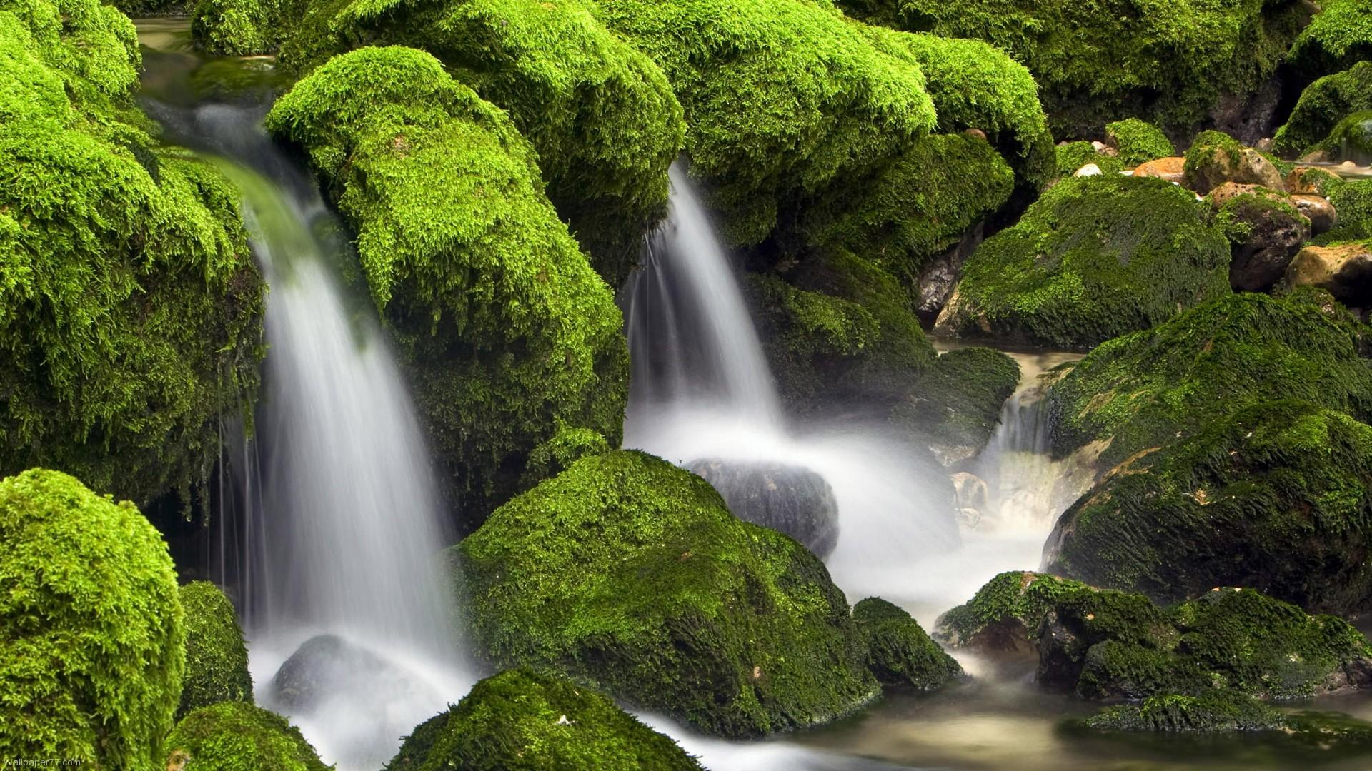waterfalls green waterfall wallpaper forest cascade 1920x1080 1920x1080