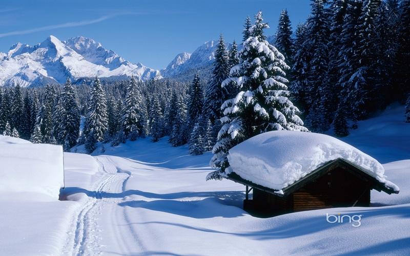 Bing Wallpaper and Screensaver Pack Winter download   Baixaki 800x500