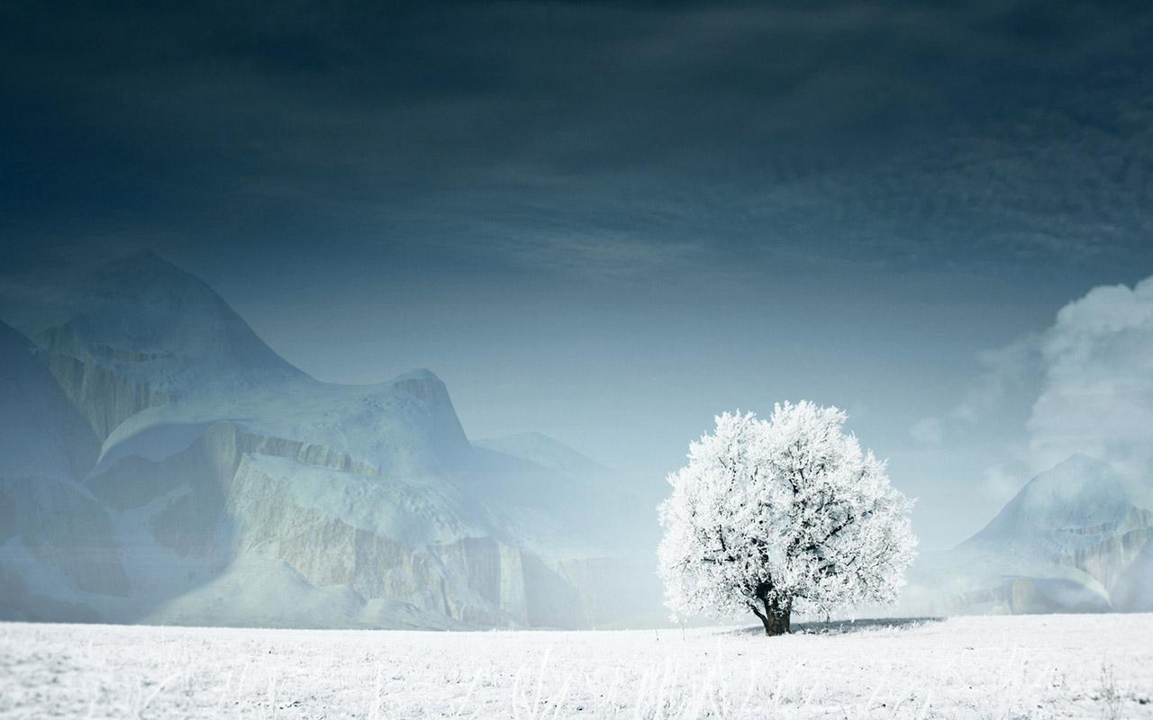 43 Beautiful Winter Wallpapers   Wallpapers for dekstop 1280x800