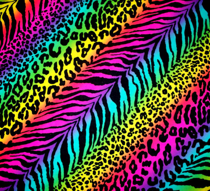 45 Rainbow Zebra Print Wallpaper On Wallpapersafari