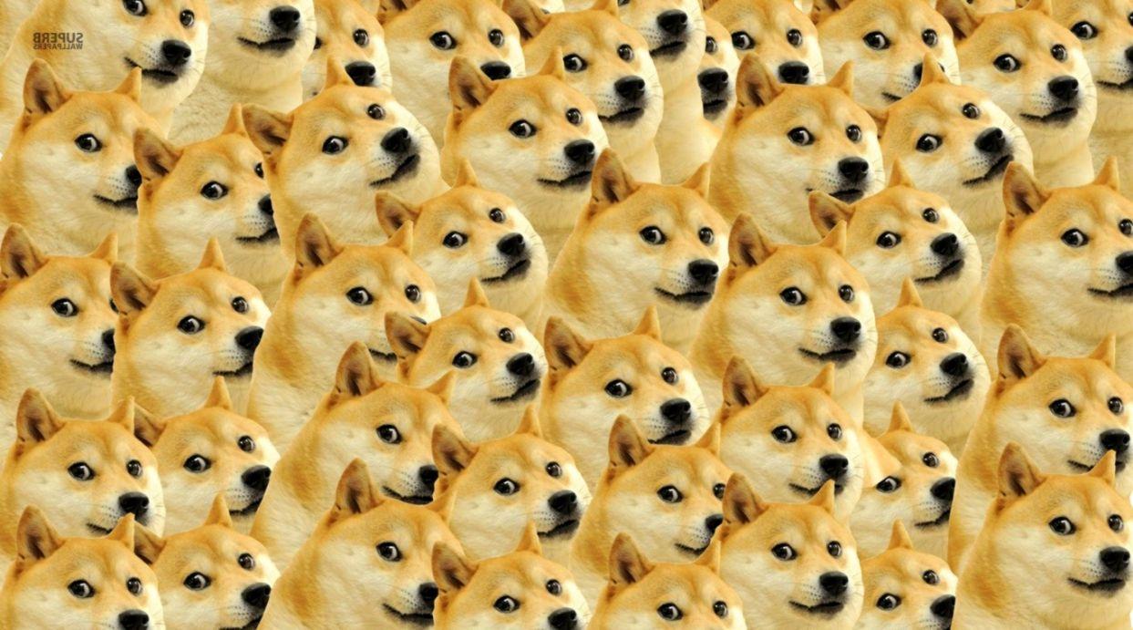 Doge Meme Wallpaper 1920X1080 Wallpapers HD Quality 1243x691