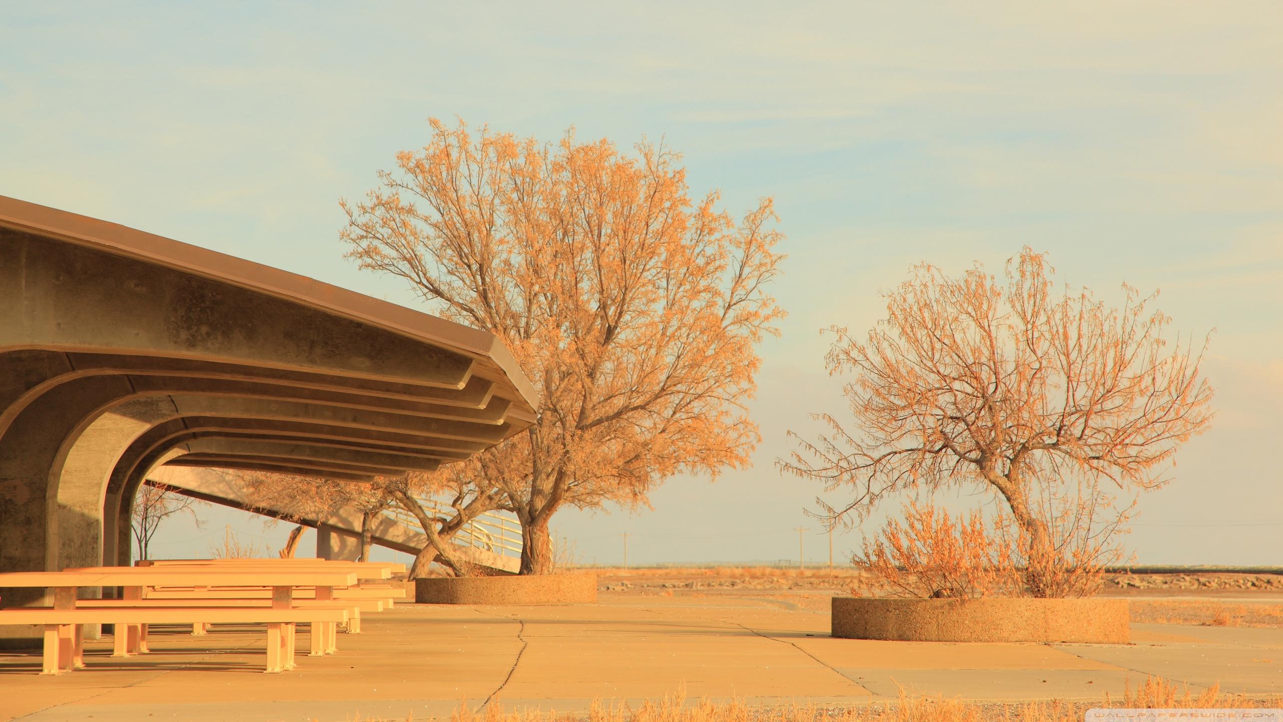 Bonneville Salt Flats Rest Area Utah 4K HD Desktop Wallpaper 2560x1440