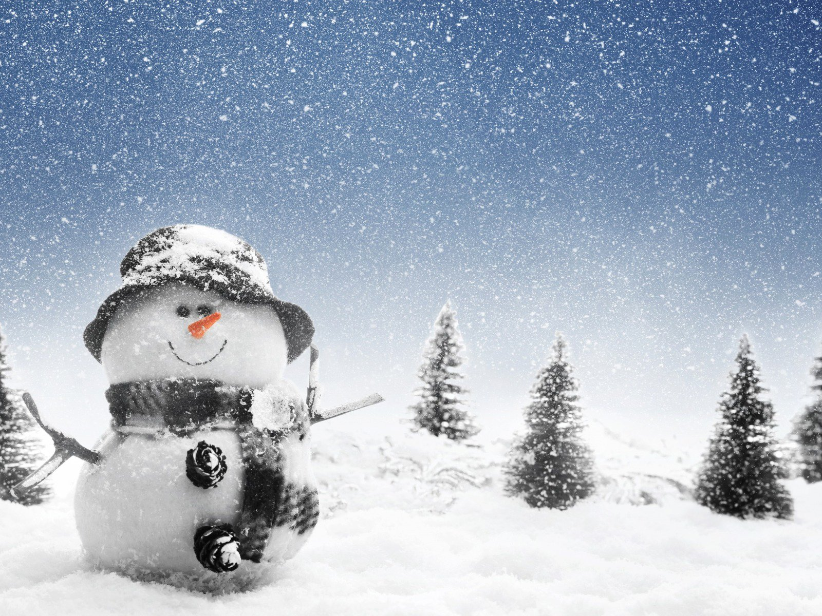 Gallery For gt Cute Winter Hd Wallpapers 1600x1200