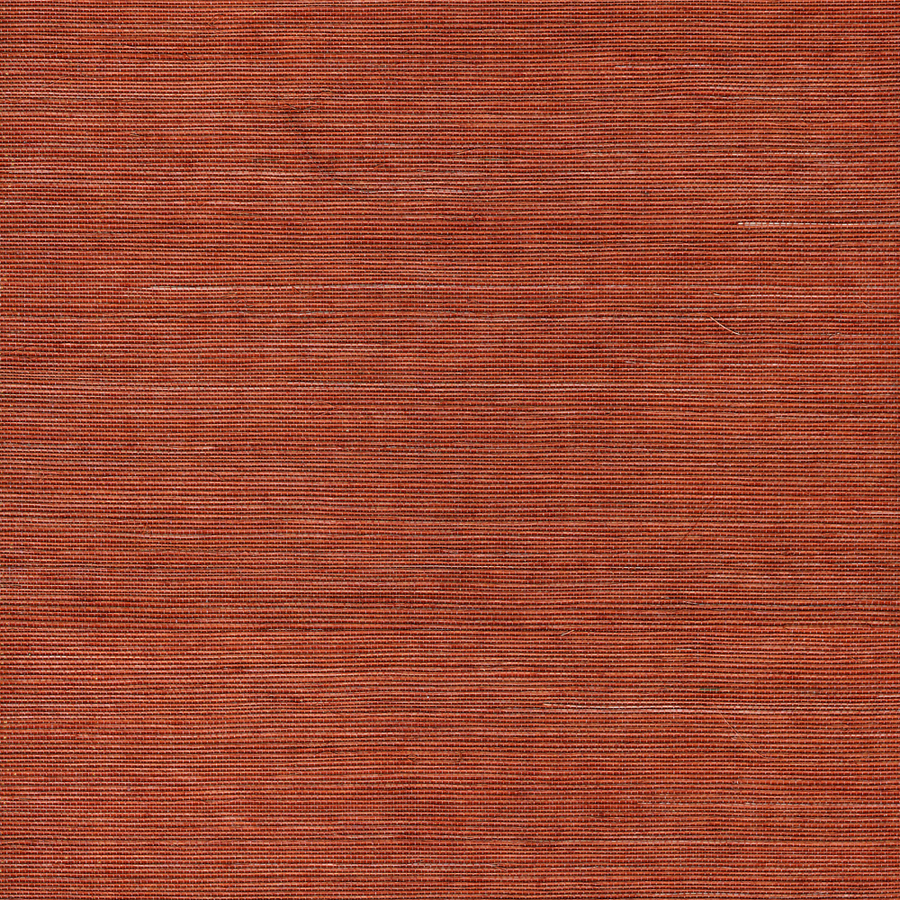 roth Orange Grasscloth Unpasted Textured Wallpaper at Lowescom 900x900
