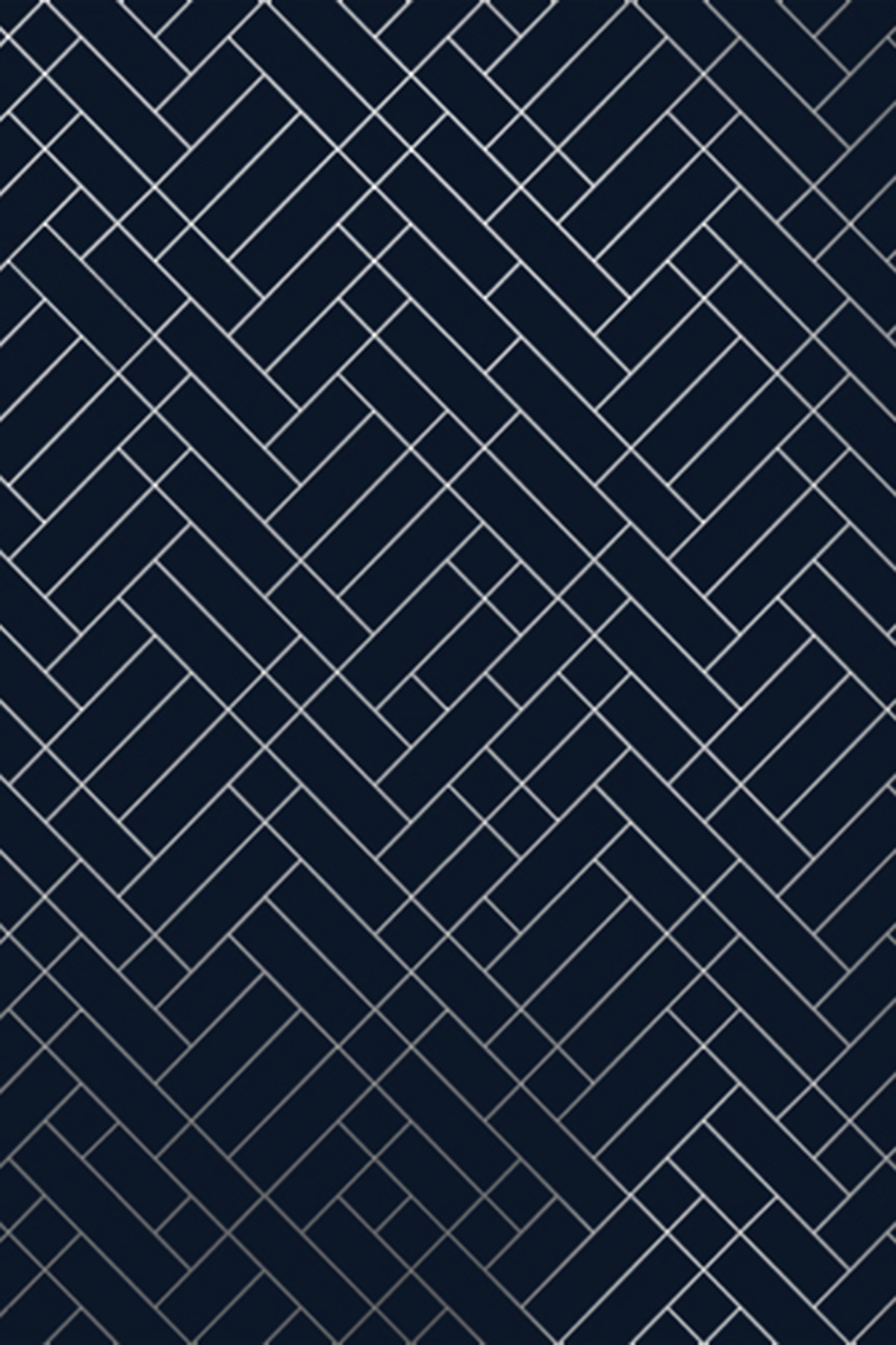 46+ Navy and Silver Wallpaper on WallpaperSafari