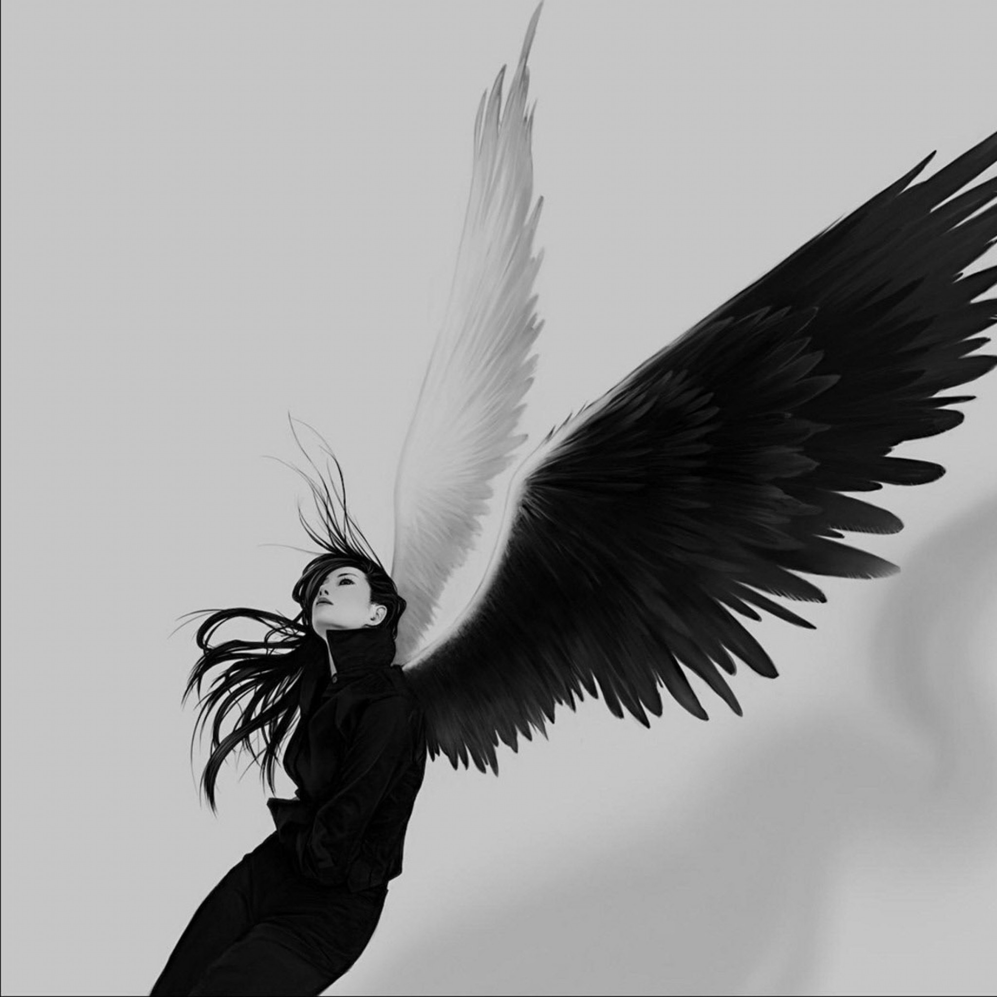 Wallpaper Angel Wings 81 images 2048x2048