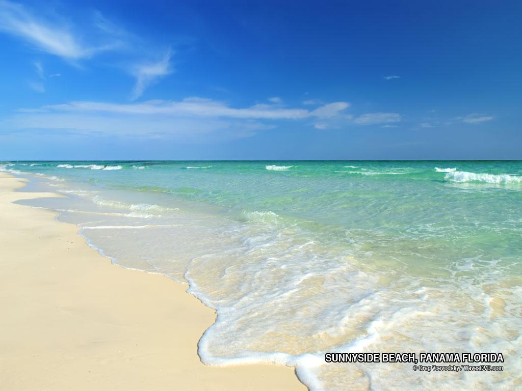 Florida Beaches 1024x768