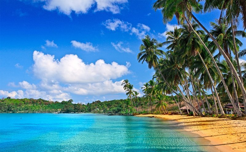 Explore Costa Ricas Best BeachesThe Costa Rica News 800x496