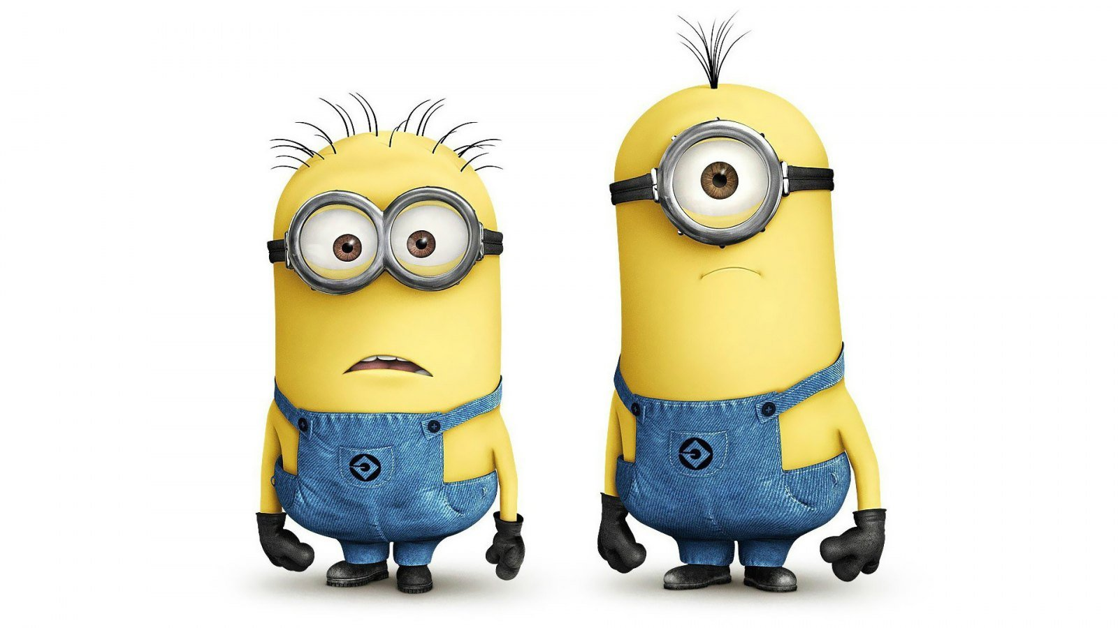 Minions Pinterest Minions Despicable Me 2 and Desktop Wallpapers 1600x900