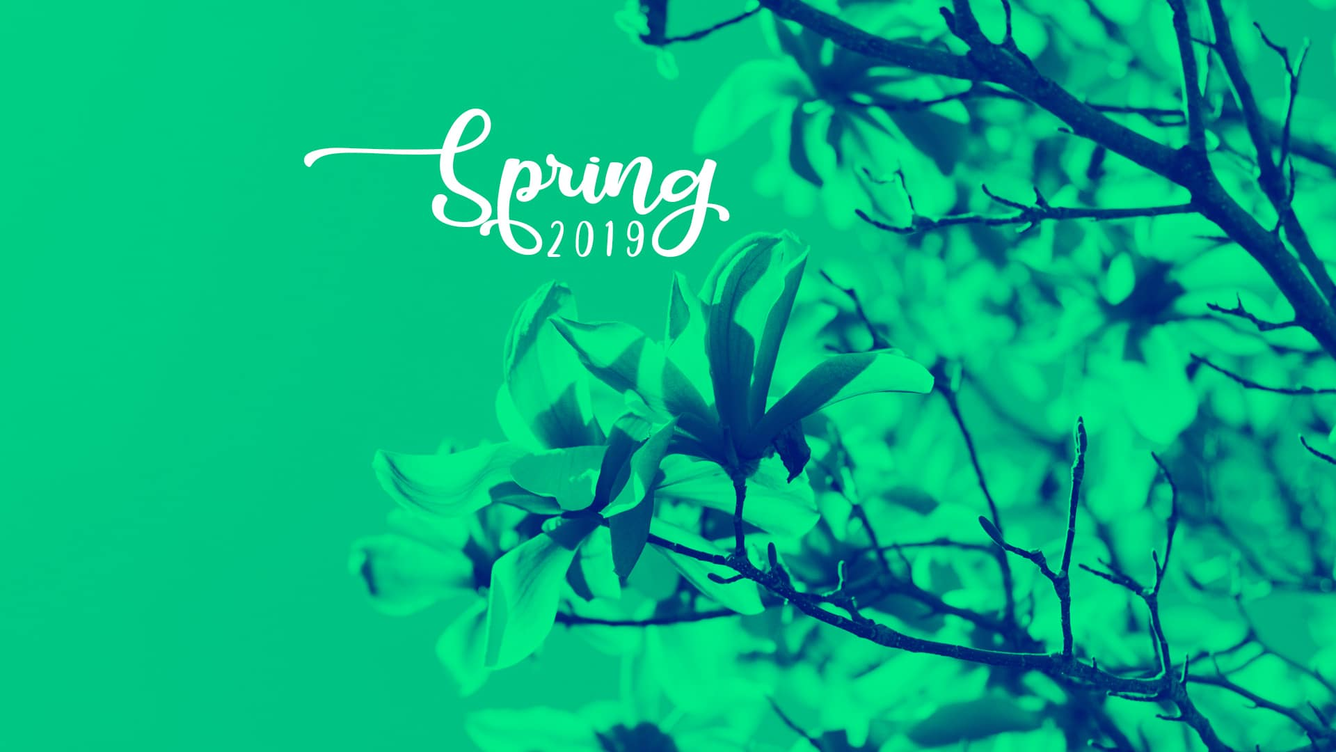 September 2019 Wallpaper Spring changes   Flicker Leap 1920x1080