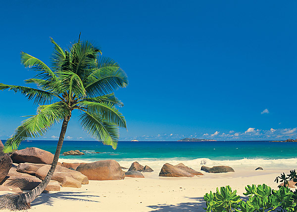 Beachy Scene Wall Murals of Paradise Brewster Wallcovering Blog 600x429