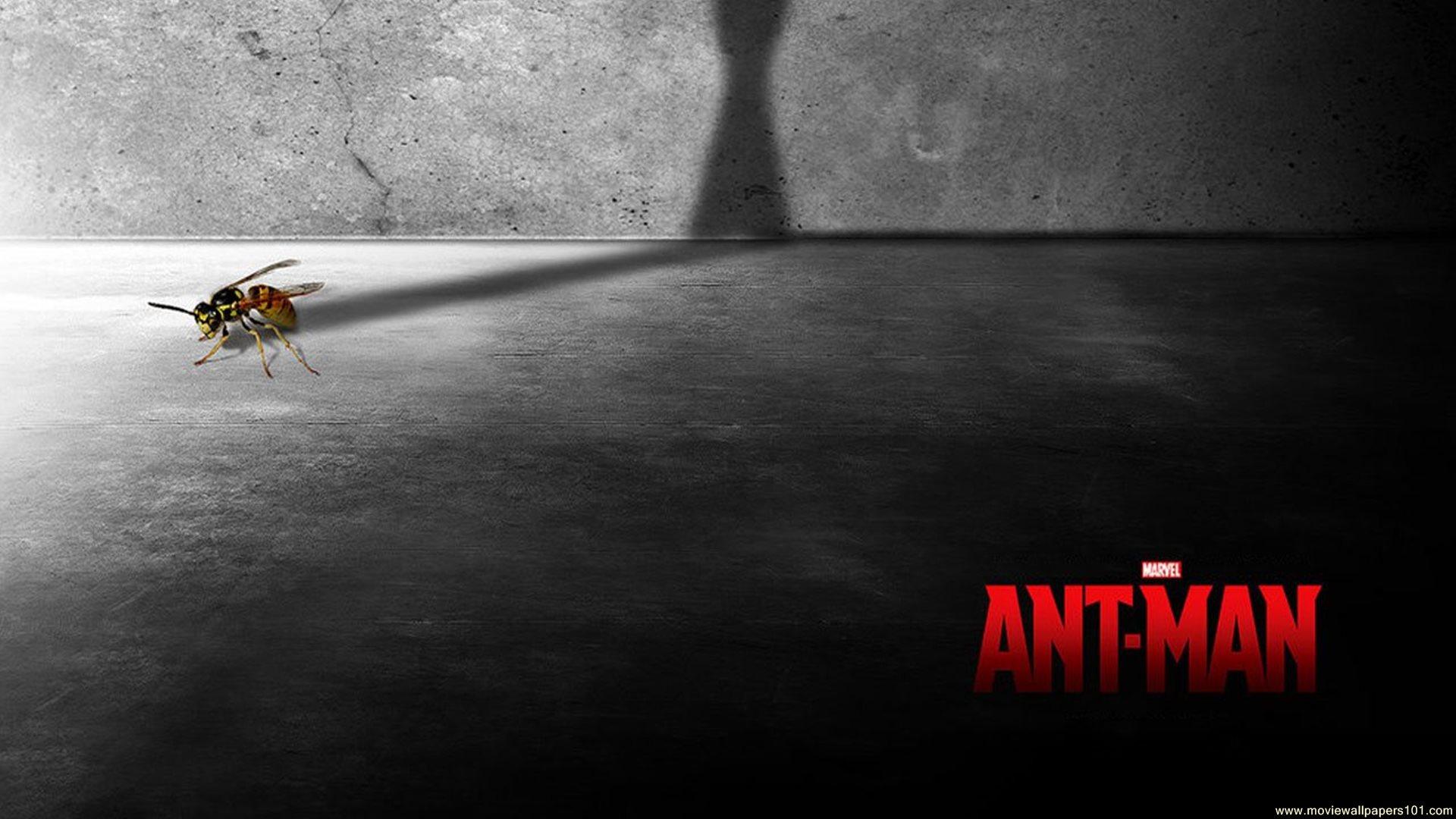 Ant Man Retina Movie Wallpaper: Ant Man Movie Wallpaper
