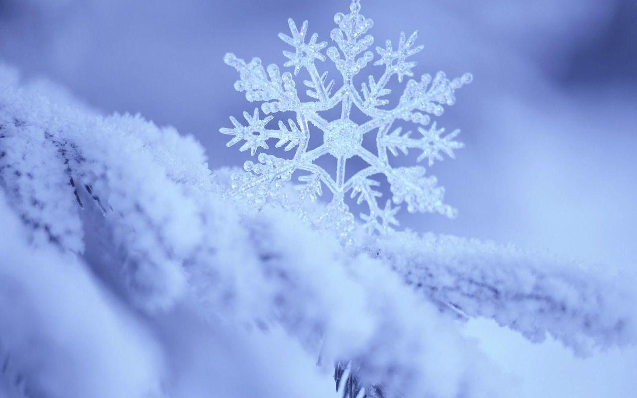 68 Snowflakes Wallpaper On Wallpapersafari
