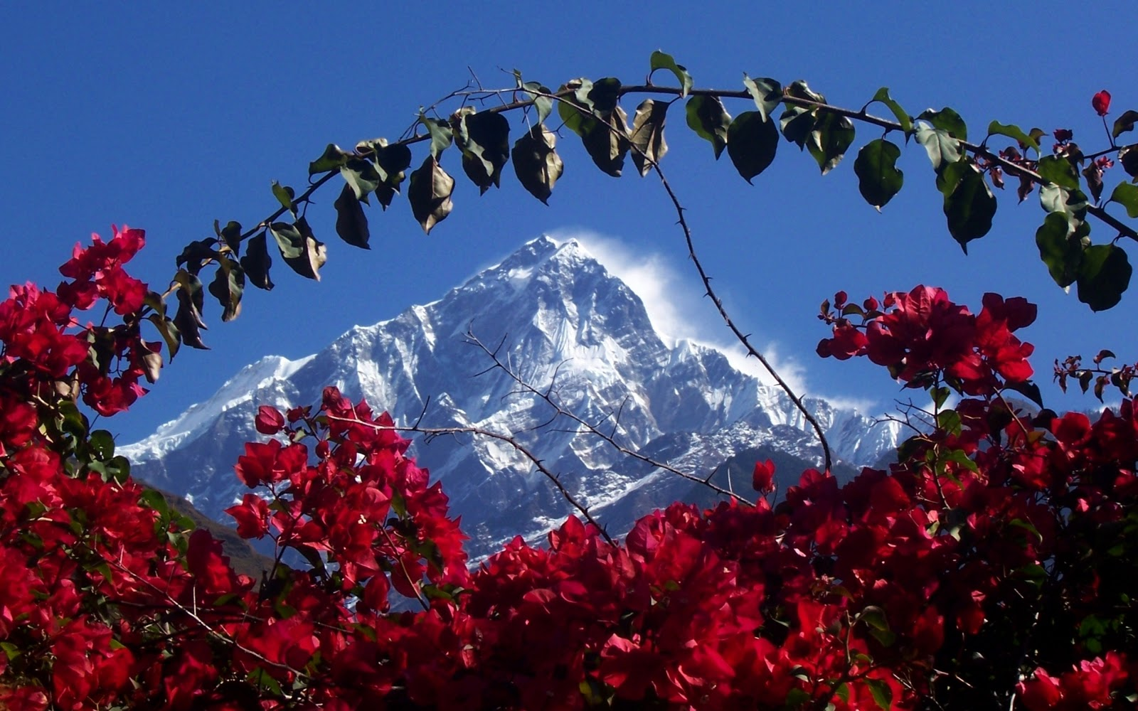 Himalaya wallpaper 1600x1000