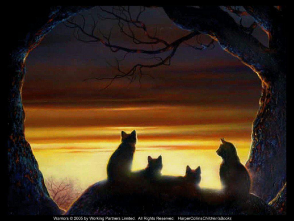 warrior cats backgrounds wallpapersafari