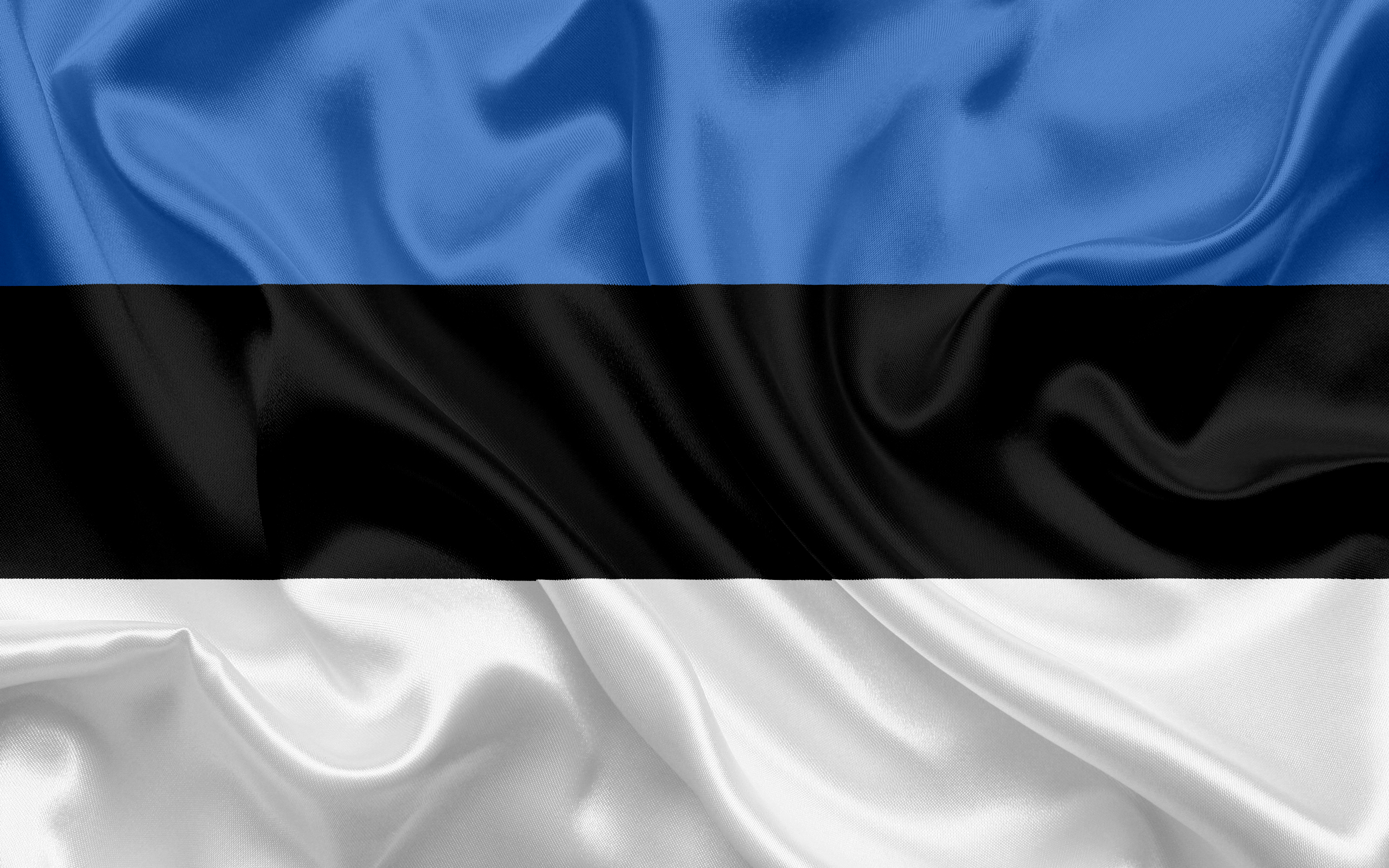 Download wallpapers Estonian flag Estonia Europe the flag of 2560x1600