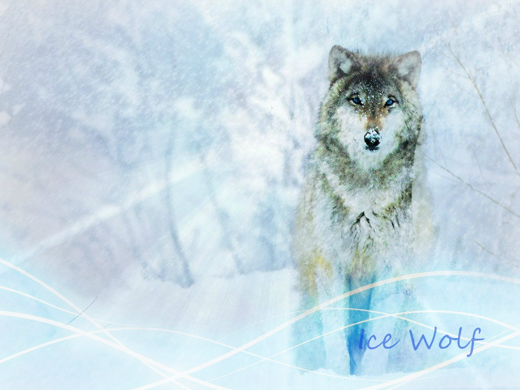 Project Wildfire Ice Wolf Wallpaper by MoonFlamesd 1024x768