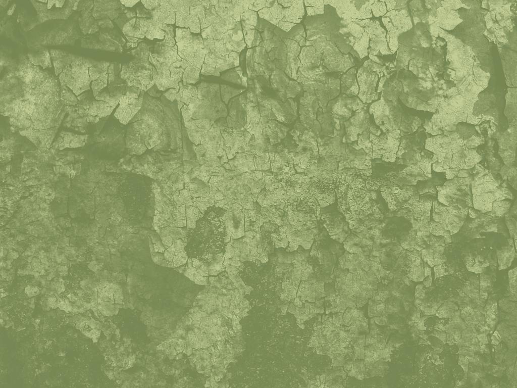 Sage Green Paint Sage Green Wallpaper Wallpapersafari
