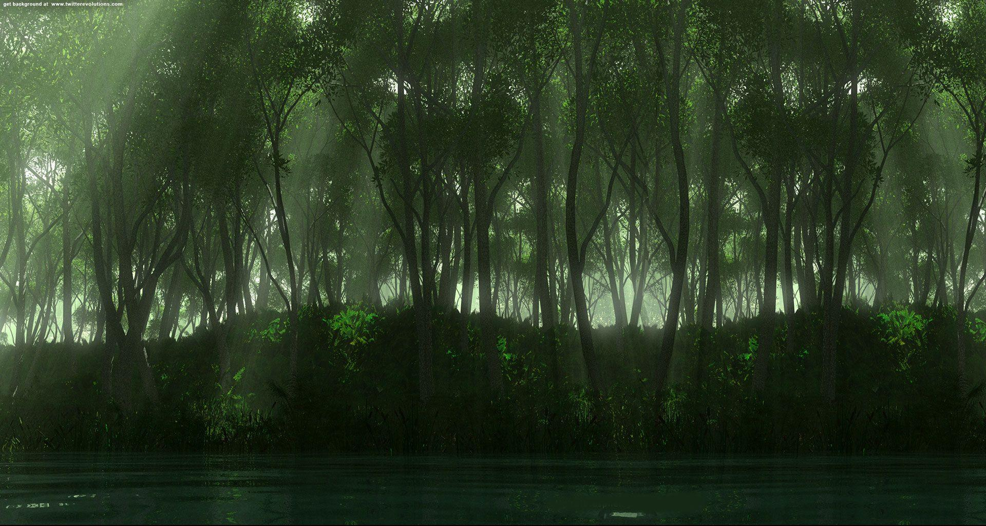 Green Forest Backgrounds 1920x1024