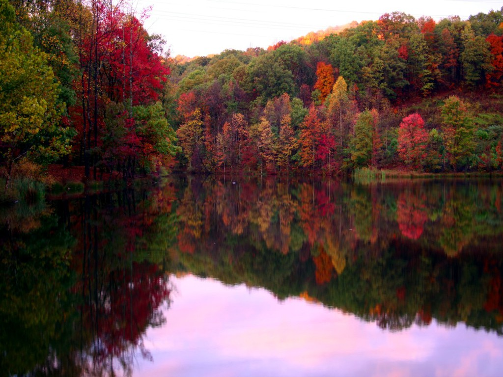 Fall Foliage   Tickner's Moose River Paddling Trails